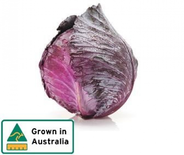 CABBAGE RED WHOLE 00000000000276.