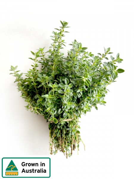 LEMON THYME BUNCH