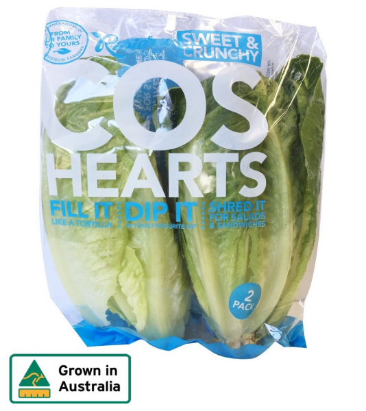 LETTUCE COS HEARTS 2 PACK RIVIERA