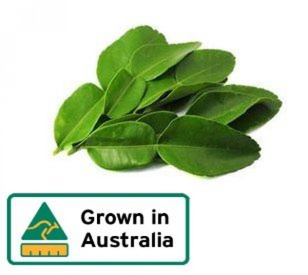KAFFIR LIME LEAVES 30G