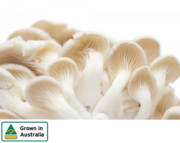 MUSHROOMS OYSTER 150G
