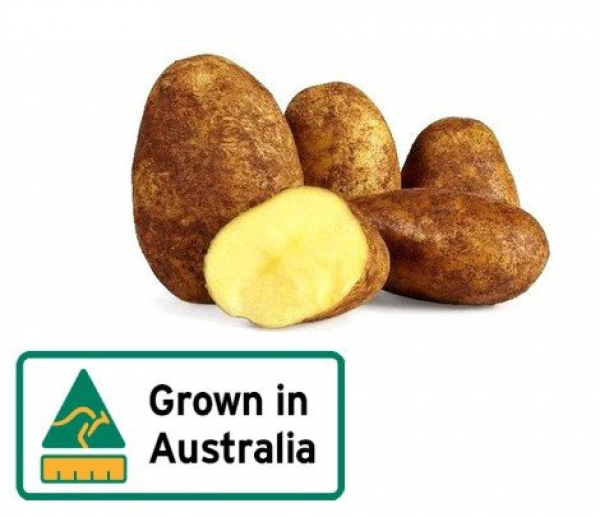 POTATO DUTCH CREAM KG
