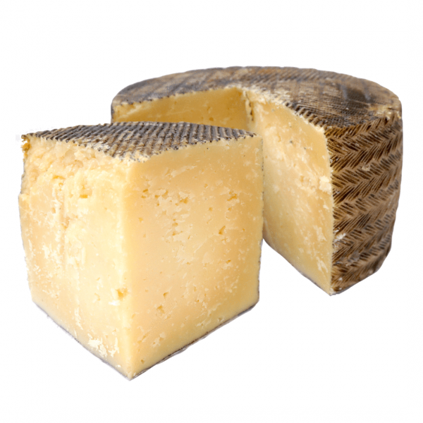 SPANISH MANCHEGO 14 MONTH